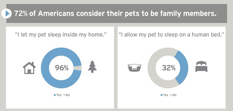 Americans see pets as family