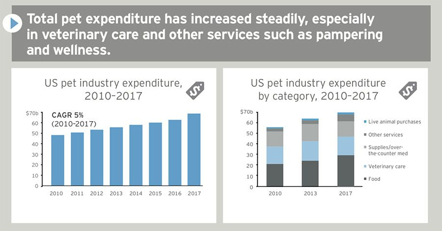 Pet expenditures by year, pet expenditures by category