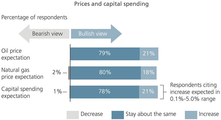 Prices and capital spending