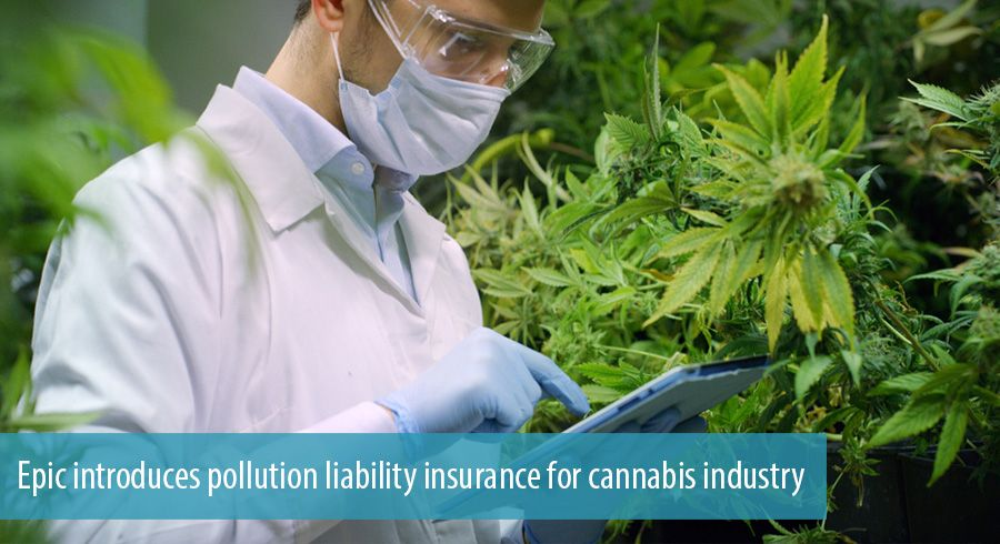 Epic introduces pollution liability insurance for cannabis industry