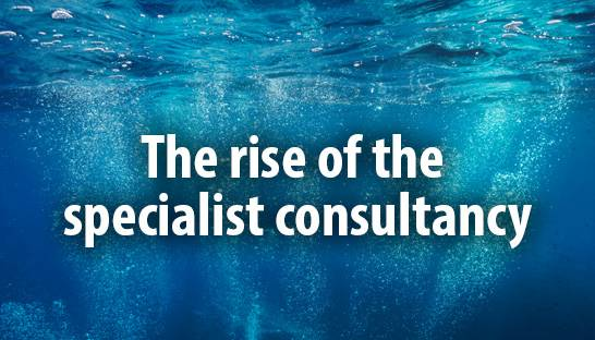 Three reasons behind the rise of the specialist consultancy