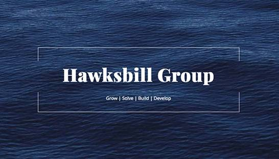 Hawksbill Group launches new public policy-focused subsidiary