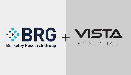 BRG acquires big data specialist Vista Analytics