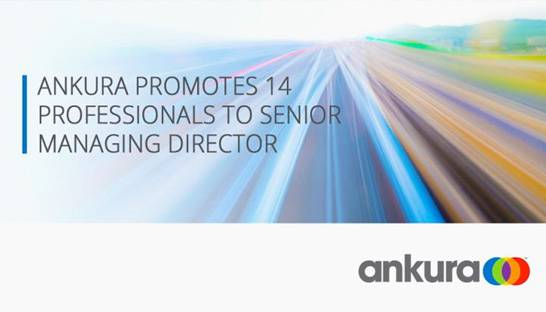 Ankura promotes 14 to senior managing director
