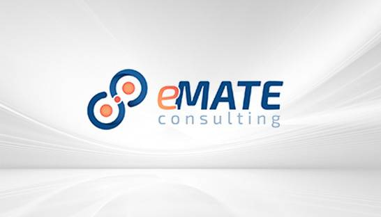 Supply chain experts launch new firm eMate Consulting