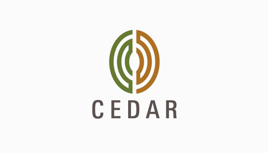 Consulting firm in the USA: Cedar Management Consulting